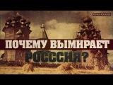 Почему вымирает Россия (Романов Роман)