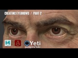 Creating Eyebrows with Yeti in Maya Part 2