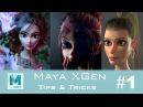CGLYO Maya XGen Tips Tricks 1