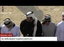 Арабский Национальный танец (Катар) HD
