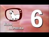Неделя с Горностаем. Выпуск №6, 12.12.17