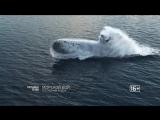 Морской бой - последний рубеж 29 декабря на РЕН ТВ