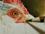 Painting a Day Demonstration - Sunlit Hen by Roberta Roby Baer PSA