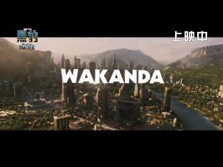 Чёрная Пантера   История Ваканды