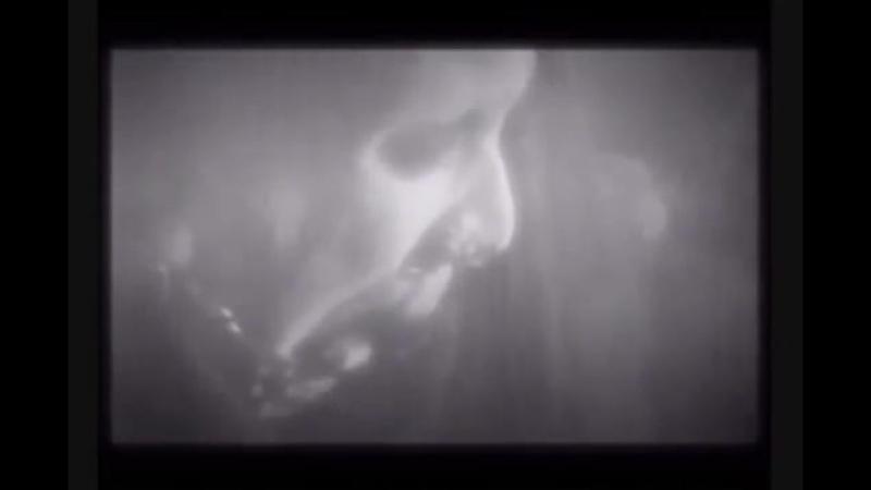 Sopor Aeternus The Ensemble Of Shadows - Time Stand Still