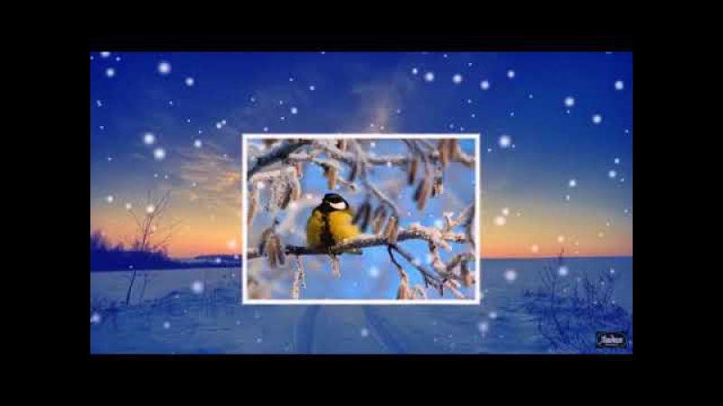 На ладони снежинки... Ольга Мельничук, муз. и исп. Самуила Фрумовича