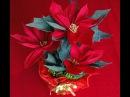Kwiaty z bibuły Poinsecja Poinsettia DIY
