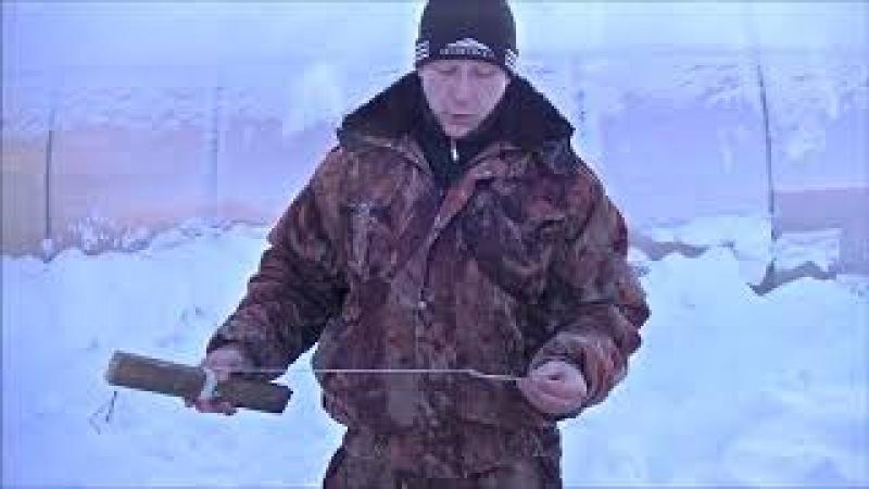Как правильно одеть живца на капкан для ловли щуки.