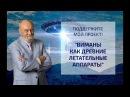 В.А.Чудинов ВИМАНЫ КАК ДРЕВНИЕ ЛЕТАТЕЛЬНЫЕ АППАРАТЫ - новый проект на сайте Пла