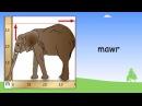 Welsh adjectives   Beginner Welsh Lessons for Children