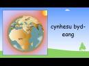 Environment in Welsh   Beginner Welsh Lessons for Children