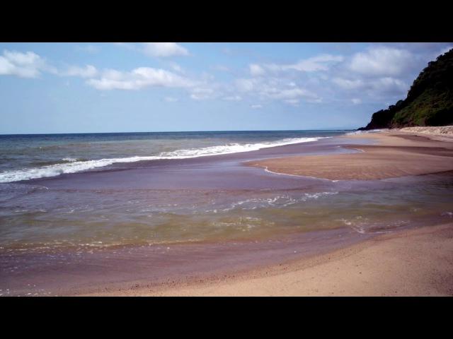 Видеофон - тропический пляж, волны, море (релакс видео)