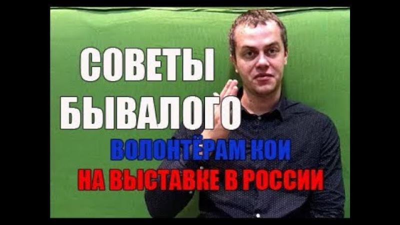 Алекс Ядаринкин с советом волонтёрам КОИ на выставке в России. [1Australia]1562