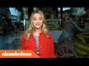 Lizzy Greene Gives You an Official Sneak Peek of Knight Squad! 🛡️ Nick