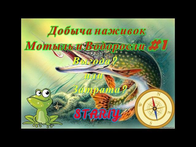 Русская Рыбалка 4. Добыча наживок. Мотыль и Водоросли. Выгода? или Затрат?а