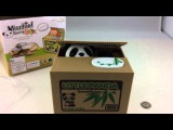 Greedy Panda Stole My Money! Panda Bear Piggy Bank Unboxing Mischief Box