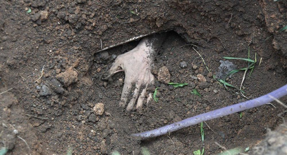 Бабка купила огород и откопала там труп, теперь ее хотят посадить