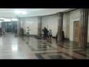 Бременские музыканты ))/15022018