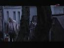 Жизнь или кошелёк (Киножурнал фитиль) реж. В. Максимов