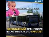 Бесплатный транспорт в Таллине: как это работает