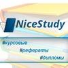 Курсовые, дипломы, репетиторство | Nicestudy