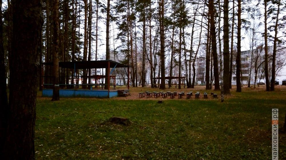 лес, изумруд, забор, Чайковский, 2017 год