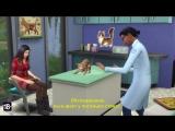 Геймплейный трейлер The Sims 4 «Кошки и собаки — ветеринар».