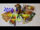 Обзор семян на 2016 год (ч.2). 02.02.2016 год.