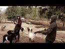 The Orange Kyte - Goats