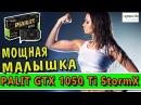 Palit GeForce GTX 1050 Ti StormX - обзор видеокарты, тест в играх и распаковка | Железный обзор 27