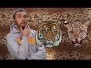 100500 - Как Выжить При Встрече с Леопардом и Тигром