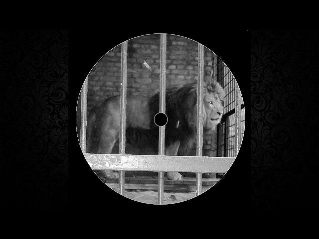 Niels Van Gogh - Pulverturm (DJ Tomcraft Remix)