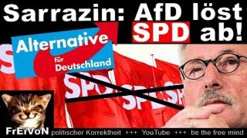 SARRAZIN: AfD löst SPD ab! UND: Österreich, du hast es besser! * HD