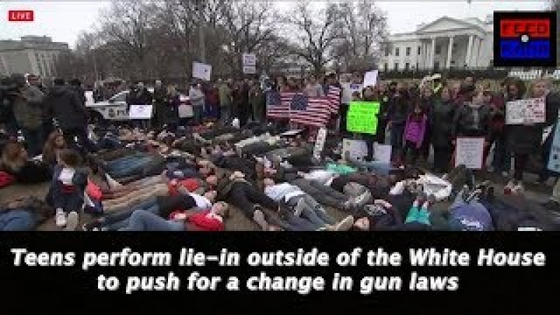 Gun Law Protest | Lie in at the White House