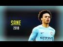 Leroy Sane 2018 ● Amazing Skill Show