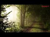 Vintage Culture, Felguk &amp Le Dib Monday (Evokings Remix)