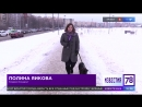 Приморский район. В Парке Озеро Долгое запретили гулять с собаками. (02.02.2018)