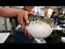 Японская уличная еда ''ЖиБэнь Лу Бянь СяоЧи''. Рыба Фугу ''ХэТунь Юй''. Ядовитая рыба Фугу ''Ду ХэТунь Юй''. Шоу по разделке рыб