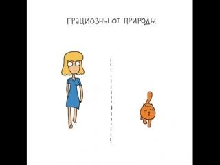 Женщины и Кошки