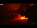Пожары в Калифорнии и спасённый кролик