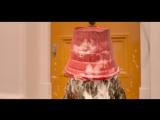 Приключения Паддингтона 2 (Paddington 2) (2017) трейлер русский язык HD / Преключения Падингтона 2 /