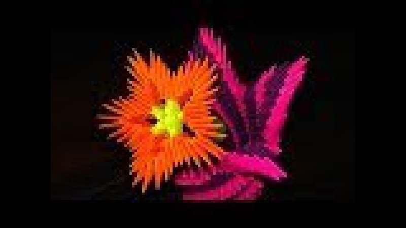 3D origami flowers (flower) a master class for beginners