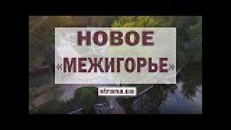 Новое Межигорье для Ляшко и его депутатов