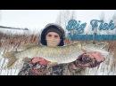 Рыбалка на прудовую щуку зимой Ужас что живёт в нутри подлещика