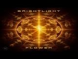 BrightLight - Flower