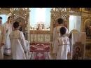 Primičná svätá liturgia o. Tomáša Fischera vo farnosti Vojčice