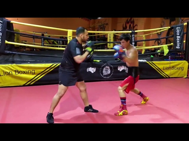 IBF Asia - Prapere for fight for the champions belt