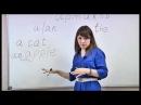 Английский на 5 Урок 14 Артикль Школа иностранных языков ИтелЛингва