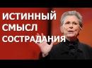 Сострадание и истинный смысл эмпатии Джоан Халифакс TED на русском