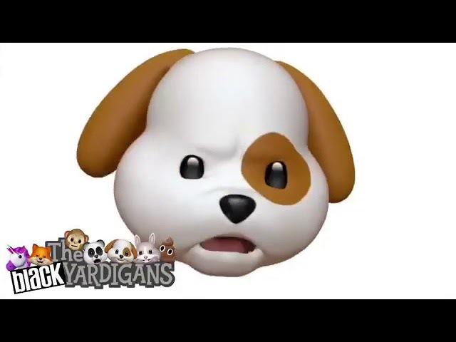 The Black Yardigans funny video pt 2